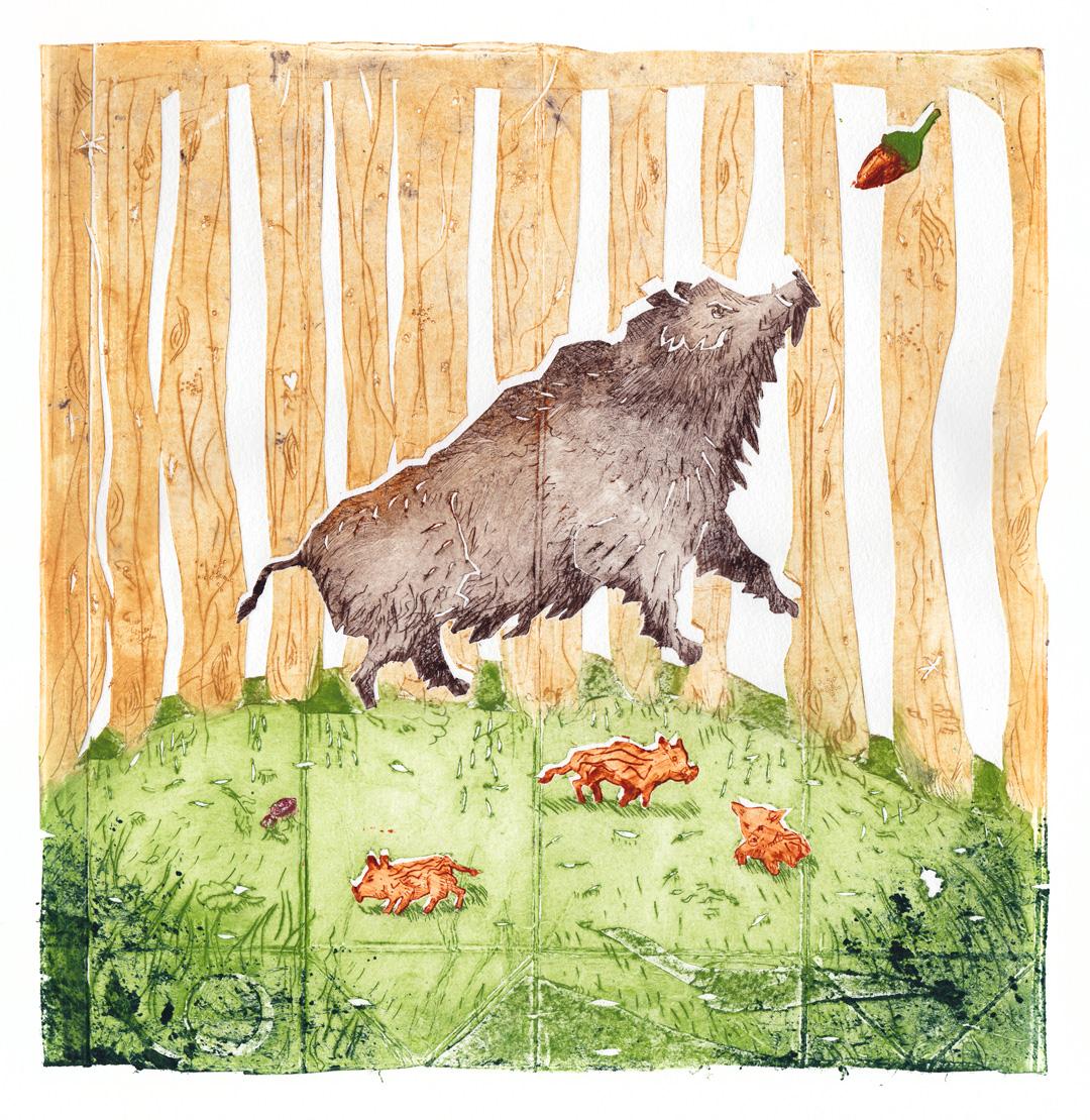 print-erdschwein